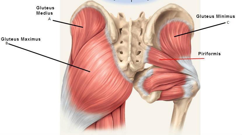 auto-masaj al durerii în articulația șoldului