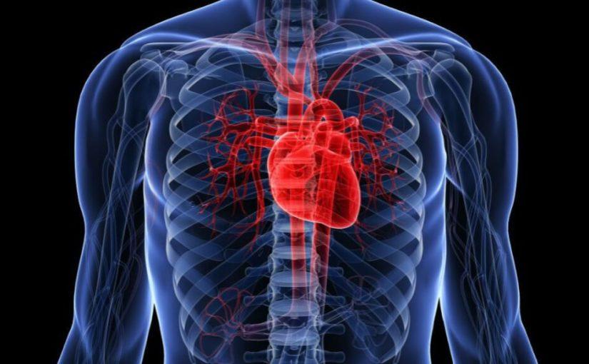 Fortificarea inimii: shiatshu, masaj, stretching
